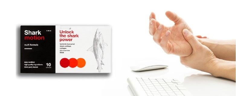 Comment acheter Shark Motion? Où commander?